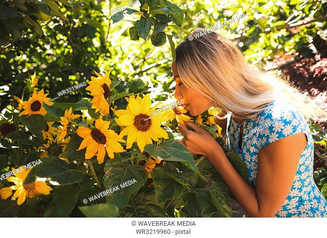 Woman smelling sunflower in the garden