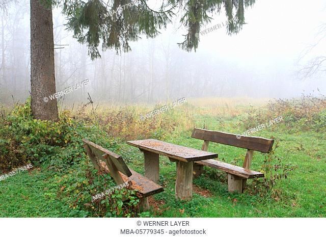 Seats with fog in autumn