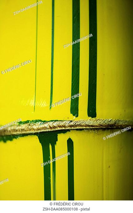Yellow bamboo, extreme close-up