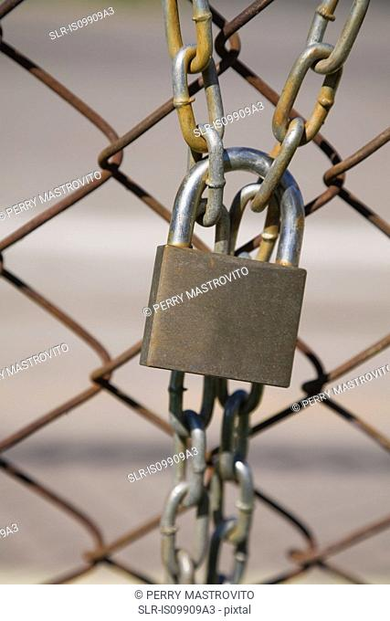 Padlock and wire mesh fence