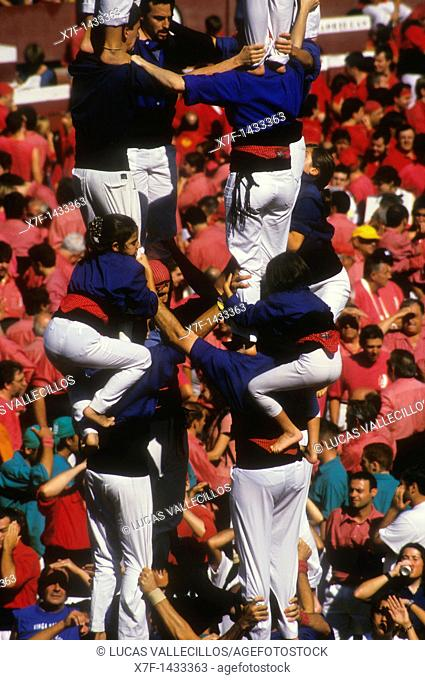 Castellers de la Vila de Gràcia 'Castellers' building human tower, a Catalan tradition Biannual contest  bullring Tarragona,Castellers, Spain