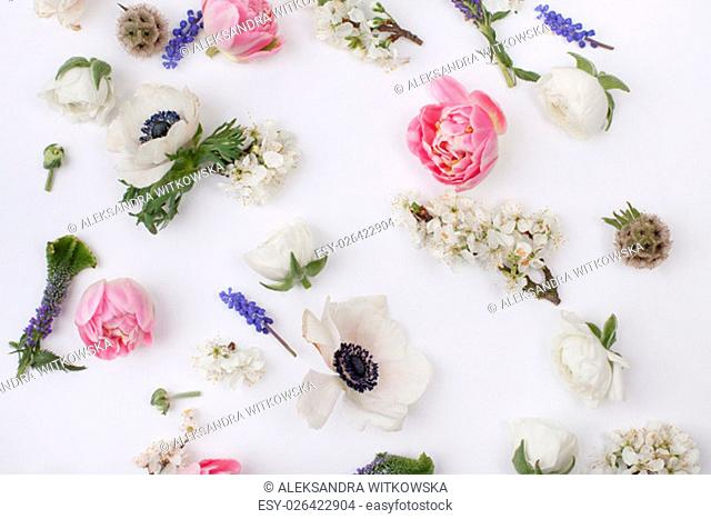 Heads of flowers