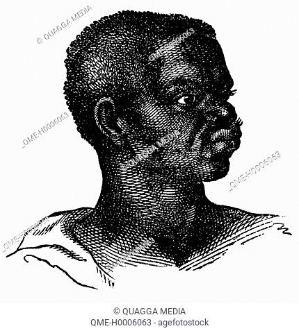 Portrait of an African from the Guinea coast