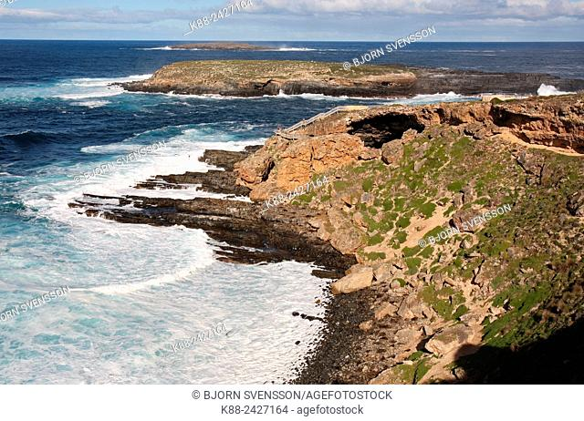 Admirals Arch at Cape Du Cuoedic. Kangaroo Island, South Australia