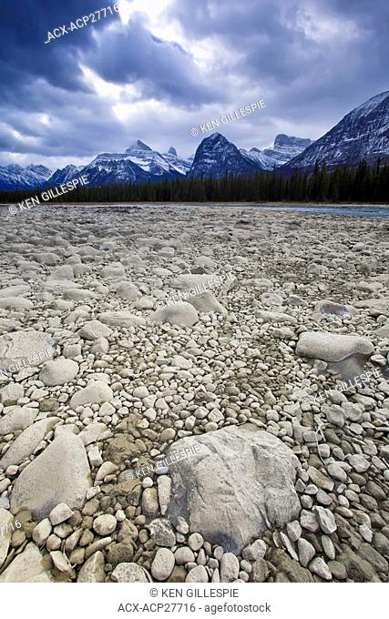 Dry rocky riverbed of the Athabasca River, Athabasca Range in background. Jasper National Park, Alberta, Canada