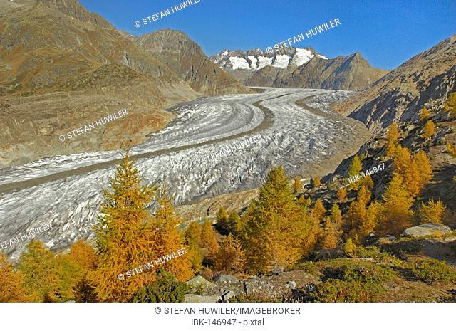 Aletsch glacier with view of the central moraine, Goms, Valais, Switzerland