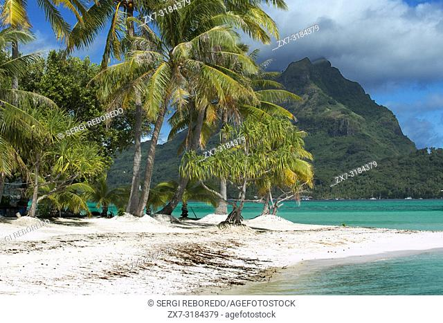 Beach of motu Tapu, a little islet in the lagoon of Bora Bora, Society Islands, French Polynesia, South Pacific