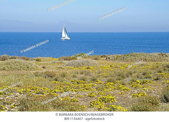 Single sail boat, coast, sea, Tabarca, Isla de Tabarca, Alicante, Costa Blanca, Spain, Europe