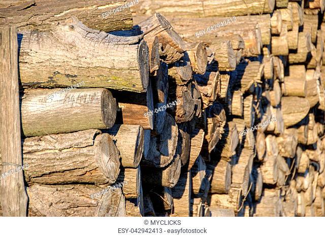 Stacks of firewood logs