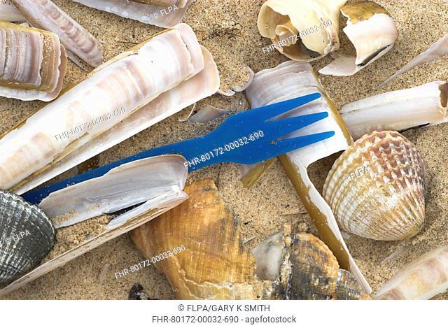 Plastic fork amongst shells on strandline, Norfolk, England, december