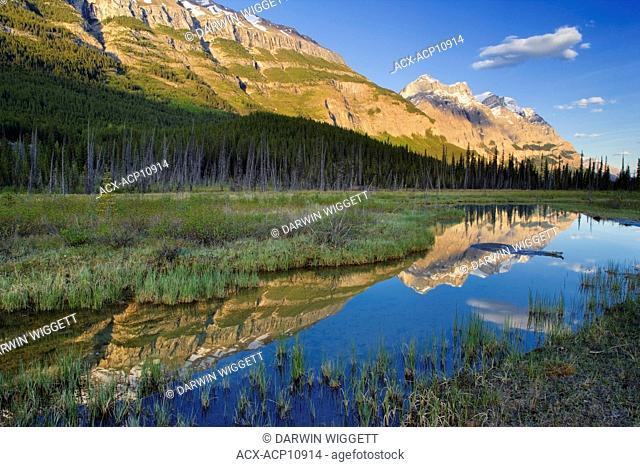Mount Wilson at Graveyard Flats, Banff National Park, Alberta, Canada