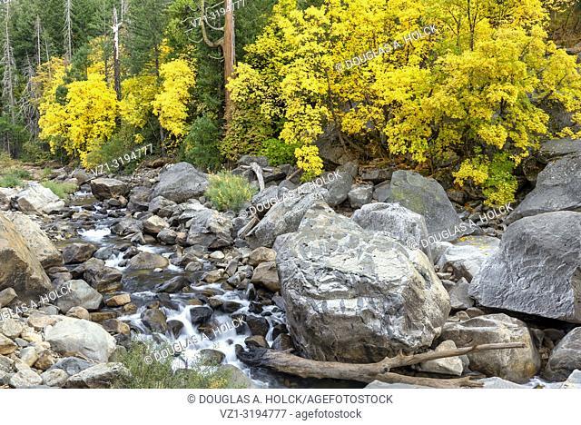 Fall along the Merced River in Yosemite National Park, California, USA