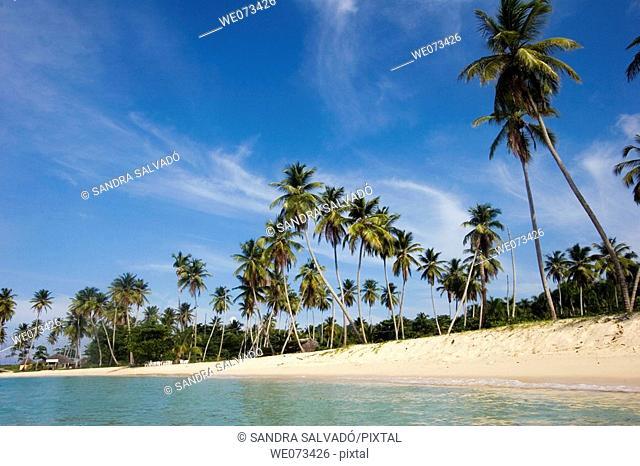 Playa Rincón, Samaná peninsula, Dominican Republic, Caribbean