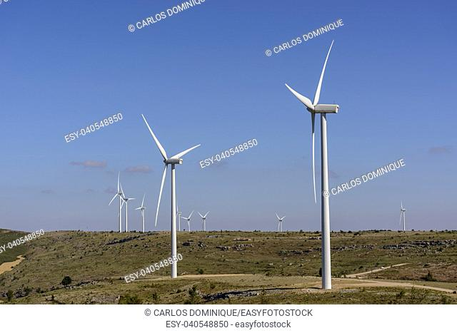 Wind turbines farm in line in Albacete Spain