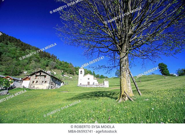 Alpine village and green meadows framed by blue sky in spring Daloo Chiavenna Valley Valtellina Sondrio Lombardy Italy Europe