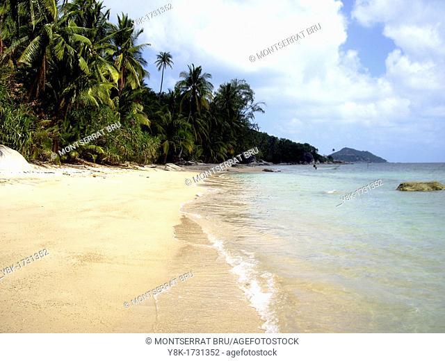 Tropical white sand beach with palmtrees and white clouds near Ban Tai, Koh Phangan, Thailand