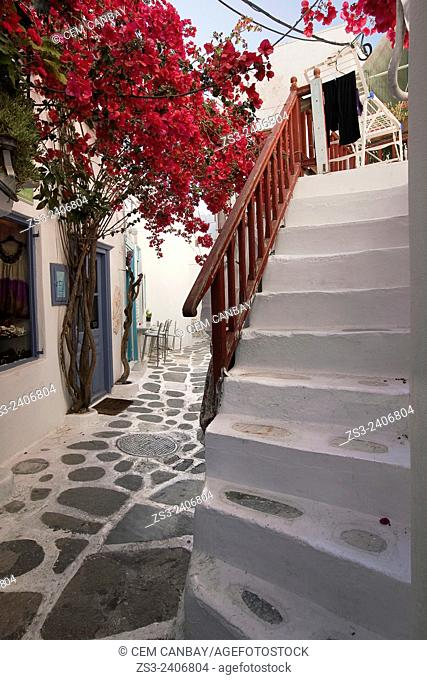 Scene from the alleys of the town center Chora, Mykonos, Cyclades Islands, Greek Islands, Greece, Europe