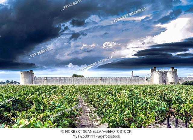 Europe, France, Gard. Aigues-Mortes. Cty wall of Aigues-Mortes