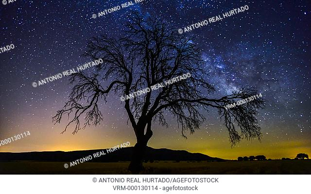 Milky Way and stars. Almansa. Albacete province. Spain
