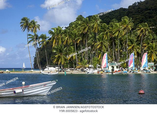 Boats and palm trees along the beach at Marigot Bay, St Lucia, West Indies