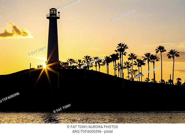 Silhouette of lighthouse and palm trees at sunset, Long Beach, California, USA
