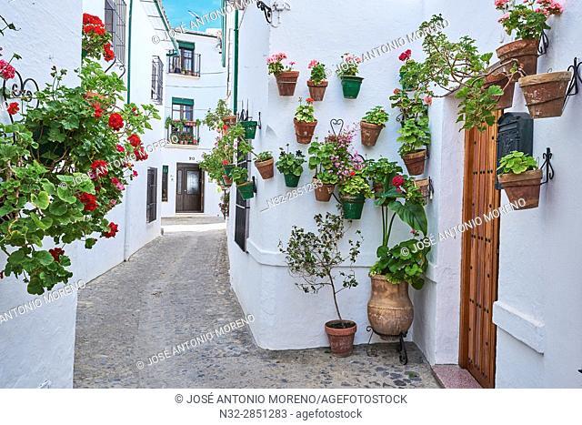 Flowerpots in Barrio de la Villa (old quarter), Priego de Cordoba, Sierra de la Subbetica, Route of the Caliphate, Cordoba province, Andalusia, Spain
