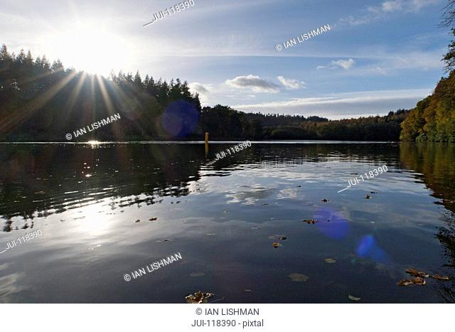 Sun Shining Through Over Autumn Trees Surrounding Lake