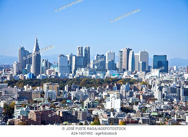 Japan-Tokyo City-Shinjuku District-Shinjuku Skyline from the East