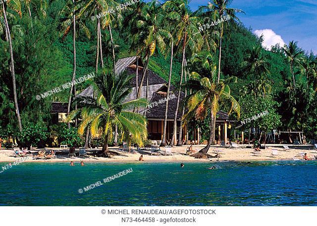 Moorea Island. French Polynesia