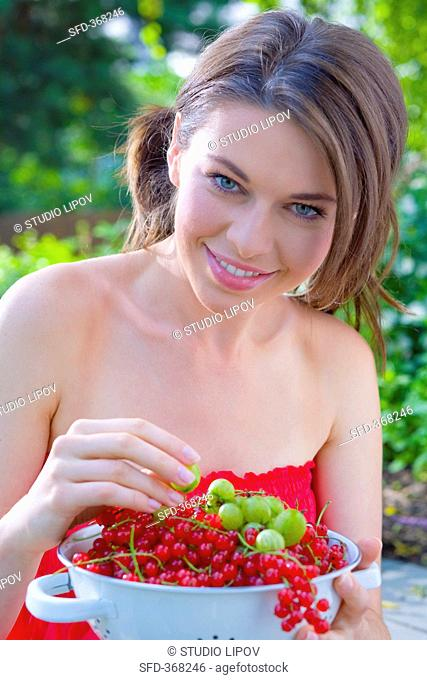 Young woman holding colander full of redcurrants & gooseberries