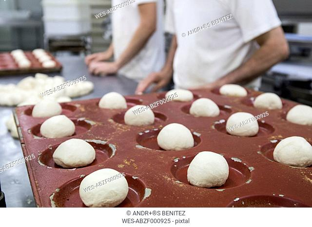 Doughs in hamburger bread molds before baking in a bakery