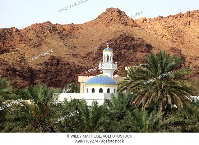 colorful mosque in wadi with date palms at the village of Fanja, Hajar al Gharbi, Sultanate of Oman, Asia