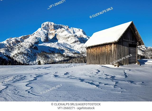 Prato Piazza/Plaetzwiese, Dolomites, South Tyrol, Italy. Winter on the Prato Piazza. In the background the Croda Rossa