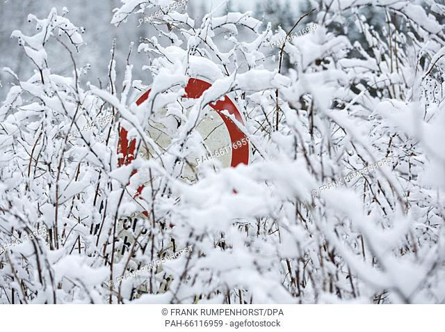 An old traffic sign overgrown with snow-covered twigs at the foot of the Grosser Feldberg mountain in Germany, 23 February 2016