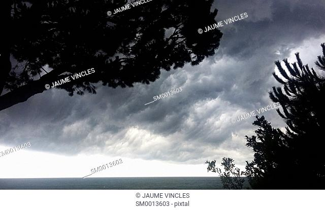 Silhouettes of trees and storm clouds. Caldes d'Estrac. Maresme, Barcelona province, Catalonia, Spain