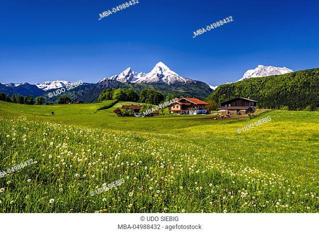 Germany, Bavaria, Upper Bavaria, Berchtesgadener Land (district), Bischofswiesen (bishop's meadows), view to Steinernes Meer (karst plateau)