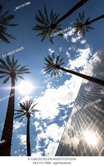 Glass pyramid, Luxor Las Vegas hotel and casino, Las Vegas