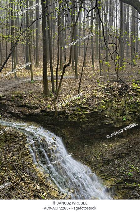 Canterbury Falls on Sulphur Creek , Dundas Valley, Hamilton, Ontario, Canada