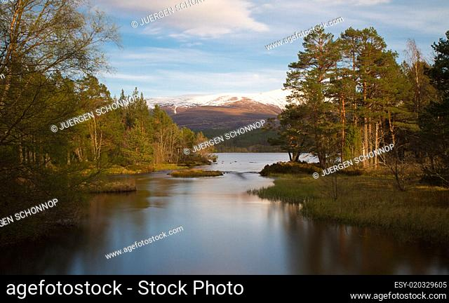 Loch Morlich in the evening sun