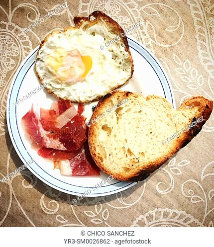 Toasted bread, Spanish Iberian pig Pata Negra ham and a fried egg for breakfast in Prado del Rey, Sierra de Grazalema, Andalusia, Spain