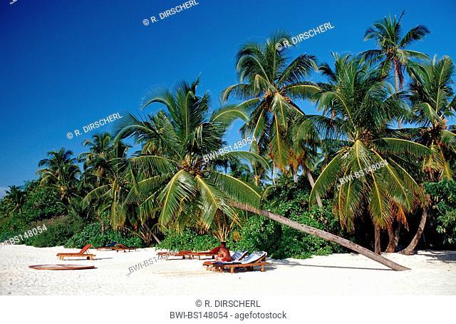beach on Maledivian Island, Maldives, Indian Ocean, Meemu Atoll, Medhufushi