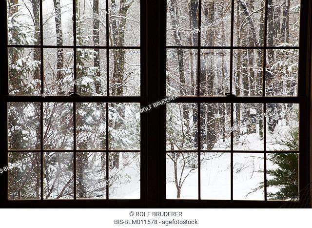 Winter scene outside window
