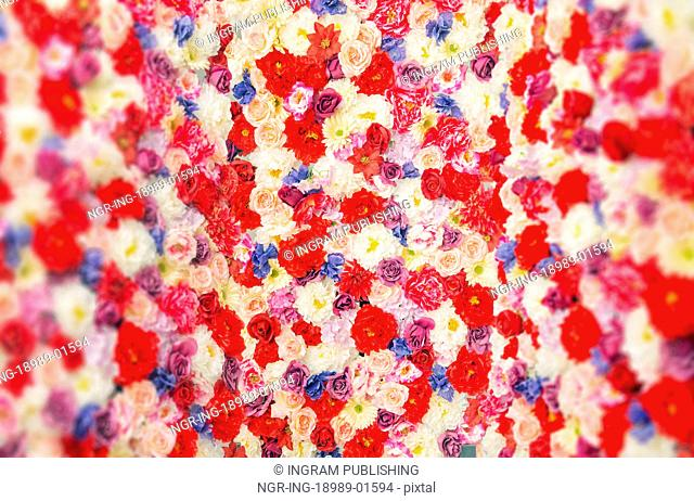 Carpet made of the colorful flowers and plants