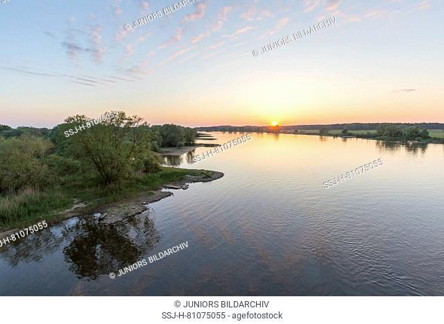 Morning at river Elbe at Lower Saxonian Elbe Valley, biosphere reserve. Lower Saxony, Germany