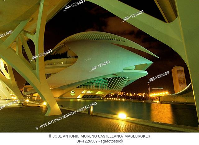 Palace of Arts Reina Sofia, City of Arts and Sciences, Comunidad Valenciana, Valencia, Spain, Europe