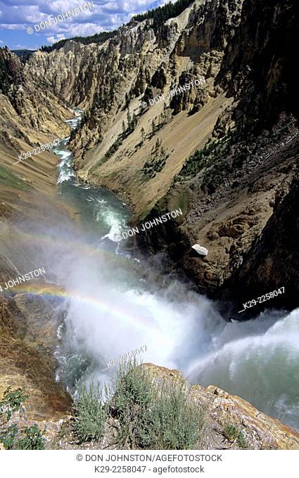 Grand Canyon of the Yellowstone with rainbow over Lower Falls, Yellowstone National Park, Wyoming, USA