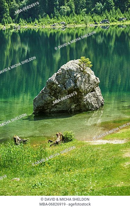 Scenery, Gosausee, mountain lake, spring