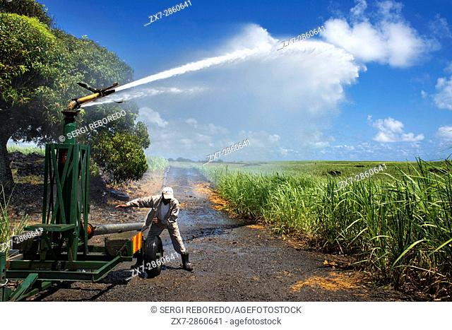 Watering sugar canes, Maurituis island