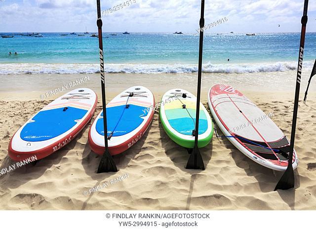 Sail boards on the beach at Santa Maria, Sal Island, Sal, Cape Verde, Africa
