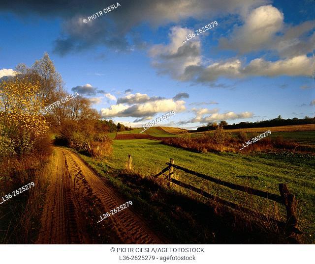 Typical rural landscape in Podlasie region. Eastern Poland